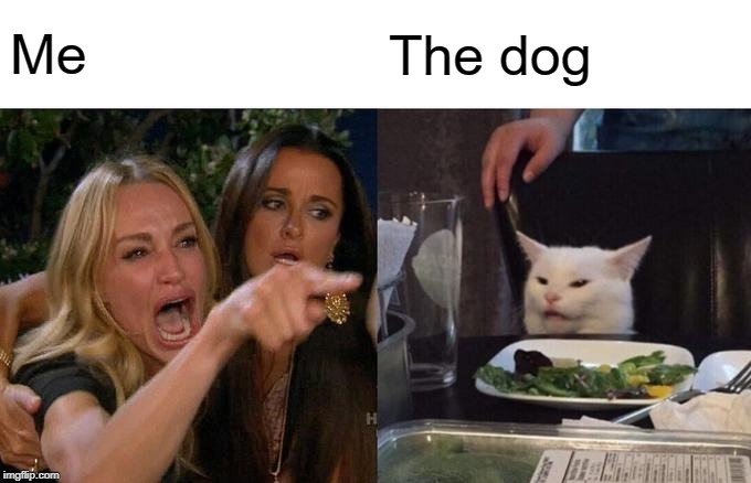 Woman Yelling At Cat Meme | Me The dog | image tagged in memes,woman yelling at cat | made w/ Imgflip meme maker
