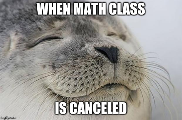 Satisfied Seal |  WHEN MATH CLASS; IS CANCELED | image tagged in memes,satisfied seal | made w/ Imgflip meme maker