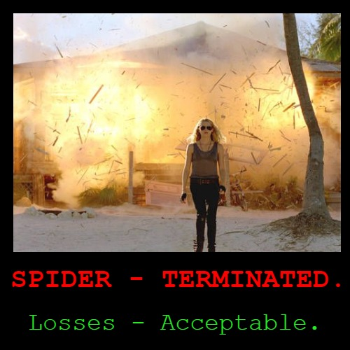 How Texans kill spiders. | SPIDER - TERMINATED. | Losses - Acceptable. | image tagged in funny,demotivationals,explosions,crazy lady,texas | made w/ Imgflip demotivational maker