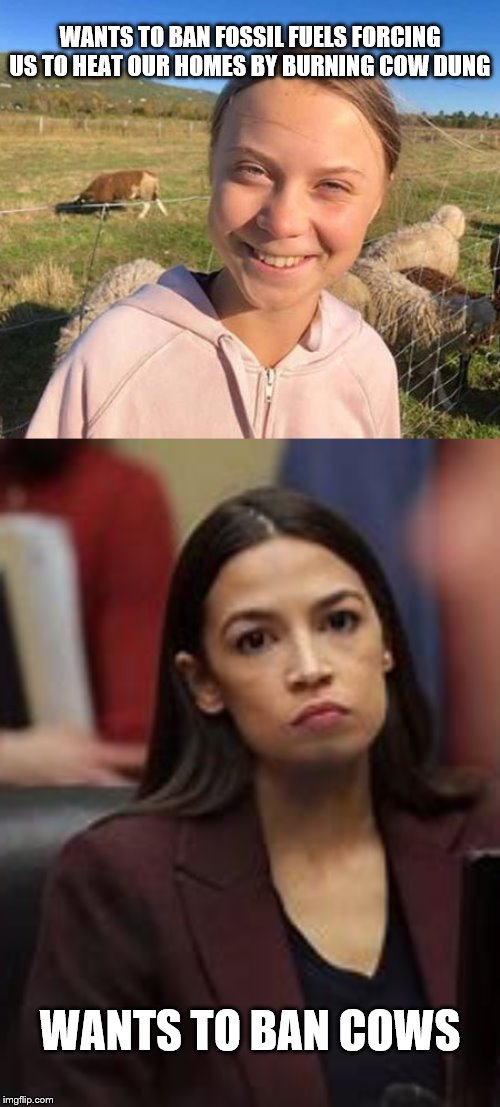 WANTS TO BAN FOSSIL FUELS FORCING US TO HEAT OUR HOMES BY BURNING COW DUNG; WANTS TO BAN COWS | image tagged in climate change,greta thunberg,aoc | made w/ Imgflip meme maker