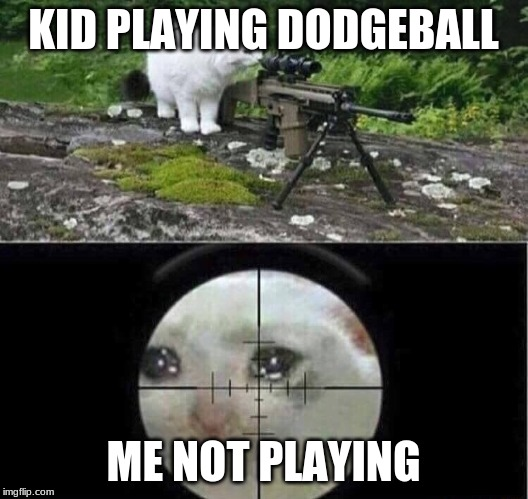 Sniper cat |  KID PLAYING DODGEBALL; ME NOT PLAYING | image tagged in sniper cat | made w/ Imgflip meme maker