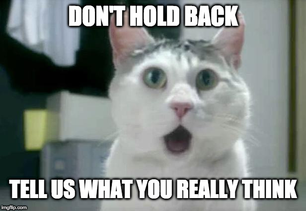OMG Cat | DON'T HOLD BACK TELL US WHAT YOU REALLY THINK | image tagged in memes,omg cat | made w/ Imgflip meme maker