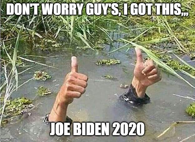 Joe Biden In 2020 |  DON'T WORRY GUY'S, I GOT THIS,,, JOE BIDEN 2020 | image tagged in joe biden 2020 | made w/ Imgflip meme maker