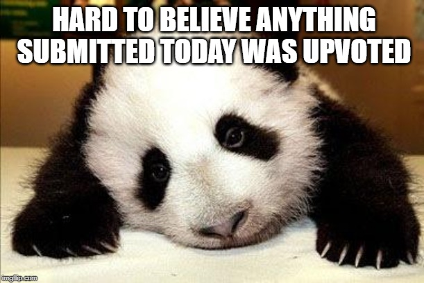 Underwhelmed Panda |  HARD TO BELIEVE ANYTHING SUBMITTED TODAY WAS UPVOTED | image tagged in sad panda,upvotes,upvote,lame | made w/ Imgflip meme maker
