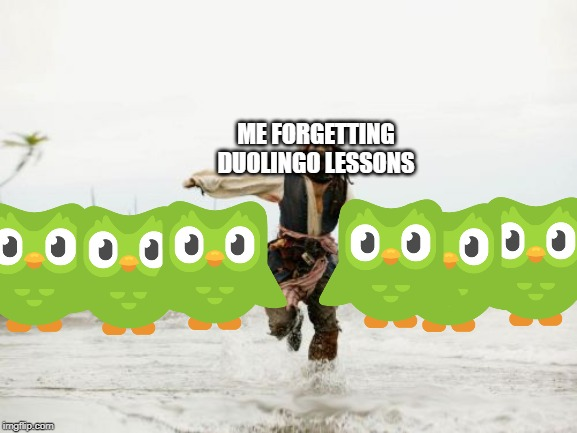 Jack Sparrow Being Chased | ME FORGETTING DUOLINGO LESSONS | image tagged in memes,jack sparrow being chased | made w/ Imgflip meme maker