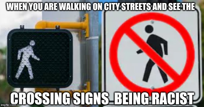 Racist Signs |  WHEN YOU ARE WALKING ON CITY STREETS AND SEE THE; CROSSING SIGNS  BEING RACIST | image tagged in laws,no racism,stupid signs,funny meme | made w/ Imgflip meme maker