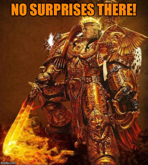 Trump Flame Warrior | NO SURPRISES THERE! | image tagged in trump flame warrior | made w/ Imgflip meme maker