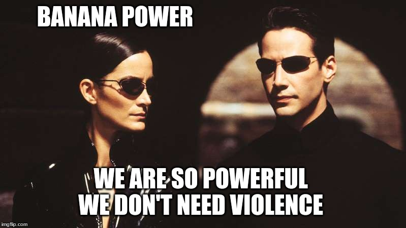The Matrix with Banana | BANANA POWER WE ARE SO POWERFUL  WE DON'T NEED VIOLENCE | image tagged in banana,fun lover | made w/ Imgflip meme maker