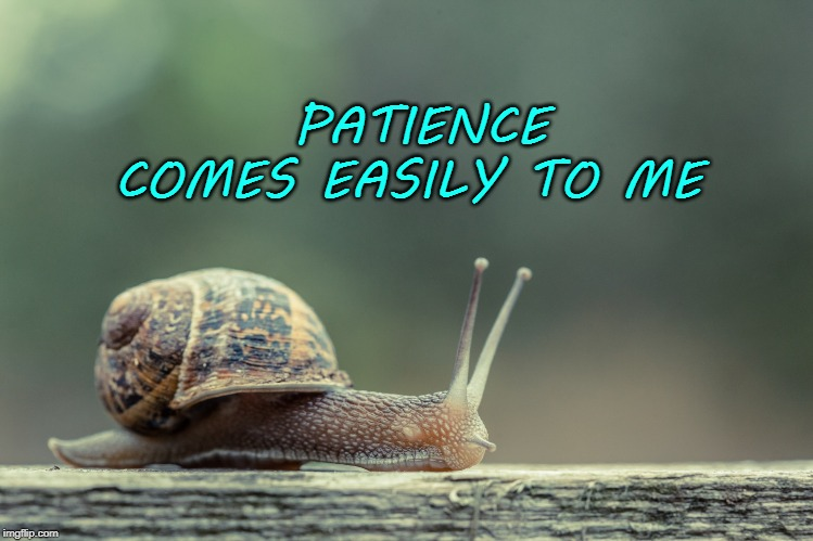 PATIENCE COMES EASILY TO ME | image tagged in patience,affirmation,snail | made w/ Imgflip meme maker