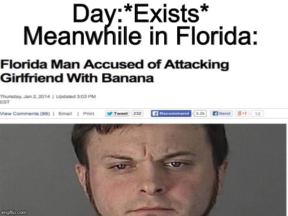 Florida Man Does It Again | Day:*Exists* Meanwhile in Florida: | image tagged in florida man,meanwhile in florida,banana | made w/ Imgflip meme maker