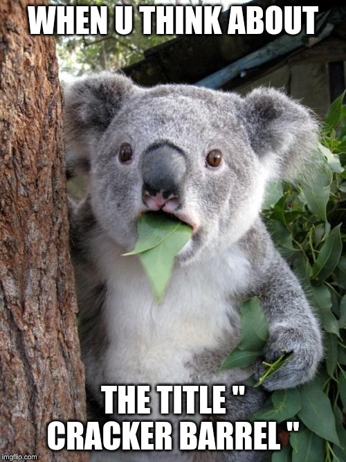 "Surprised Koala |  WHEN U THINK ABOUT; THE TITLE "" CRACKER BARREL "" 