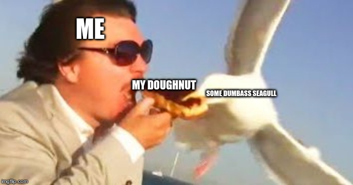 swiping seagull | ME MY DOUGHNUT SOME DUMBASS SEAGULL | image tagged in swiping seagull | made w/ Imgflip meme maker