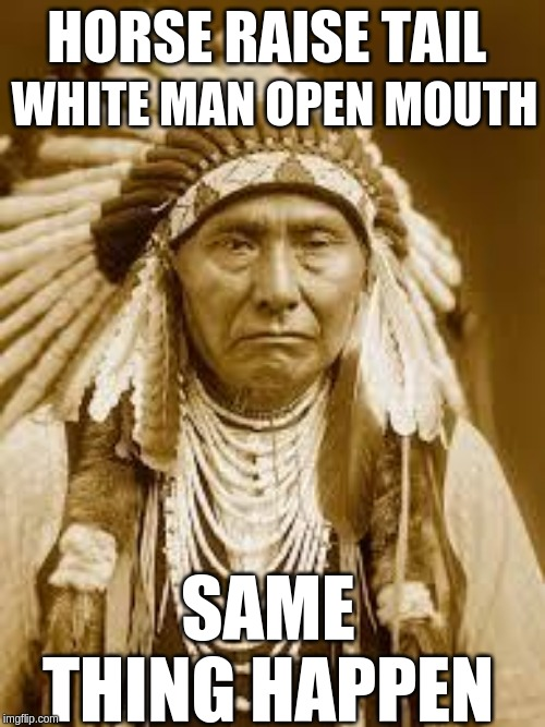 Native American | HORSE RAISE TAIL SAME THING HAPPEN WHITE MAN OPEN MOUTH | image tagged in native american | made w/ Imgflip meme maker