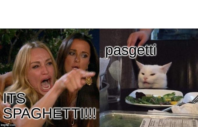 Woman Yelling At Cat Meme | ITS SPAGHETTI!!! pasgetti | image tagged in memes,woman yelling at cat | made w/ Imgflip meme maker