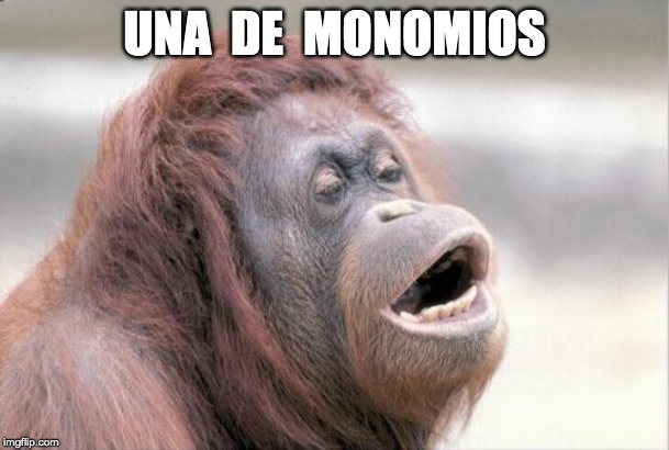 Monkey OOH | UNA  DE  MONOMIOS | image tagged in memes,monkey ooh | made w/ Imgflip meme maker