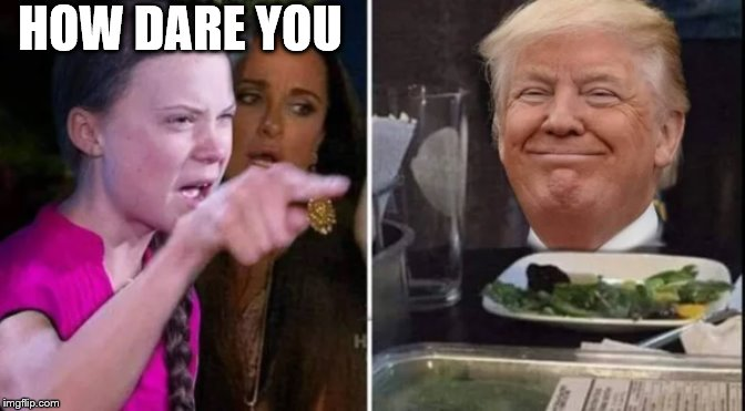 angry greta thunberg yelling at confused trump |  HOW DARE YOU | image tagged in angry greta thunberg yelling at confused trump | made w/ Imgflip meme maker