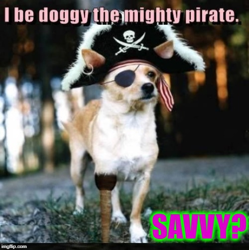 Captain Spot Sparrow |  SAVVY? | image tagged in vince vance,pirate,pirates of the caribbean,dogs,captain jack sparrow,peg leg | made w/ Imgflip meme maker
