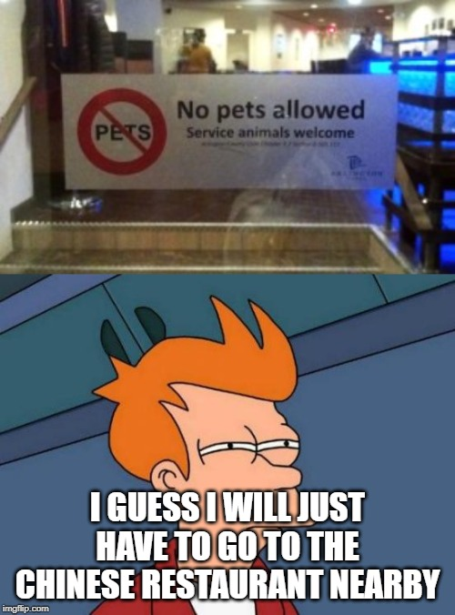 No dogs aloud | I GUESS I WILL JUST HAVE TO GO TO THE CHINESE RESTAURANT NEARBY | image tagged in memes,funny,futurama fry,dogs,chinese,chinese food | made w/ Imgflip meme maker