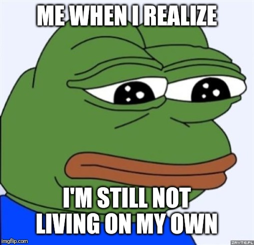 If only I had my own place right now | ME WHEN I REALIZE I'M STILL NOT LIVING ON MY OWN | image tagged in sad frog,memes | made w/ Imgflip meme maker