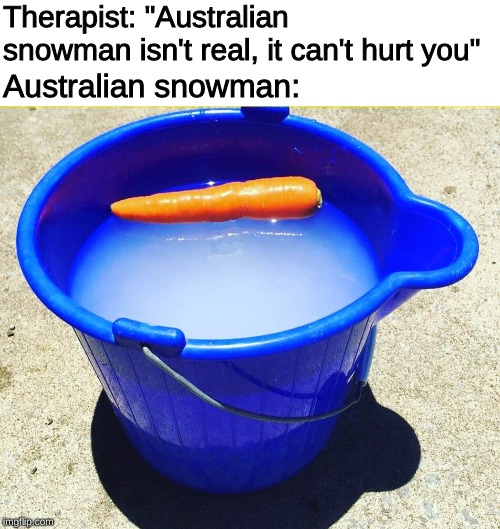 "Aussie Christmas spirit. |  Therapist: ""Australian snowman isn't real, it can't hurt you""; Australian snowman: 