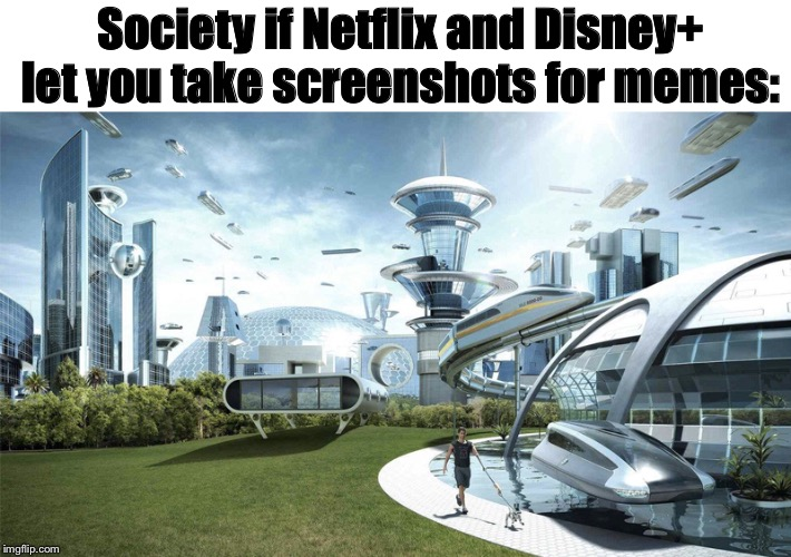 Don't you agree | Society if Netflix and Disney+ let you take screenshots for memes: | image tagged in disney plus,netflix,screenshot,society if | made w/ Imgflip meme maker