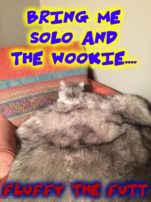 Cat Wars |  BRING ME SOLO AND THE WOOKIE.... FLUFFY THE FUTT | image tagged in vince vance,cats,star wars,jabba the hutt,chewbacca,han solo | made w/ Imgflip meme maker