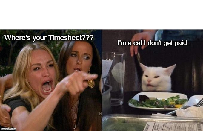 Don't be a Cat.. | Where's your Timesheet??? I'm a cat I don't get paid.. | image tagged in memes,woman yelling at cat,timesheet meme,timesheet reminder,funny cat memes,cat meme | made w/ Imgflip meme maker