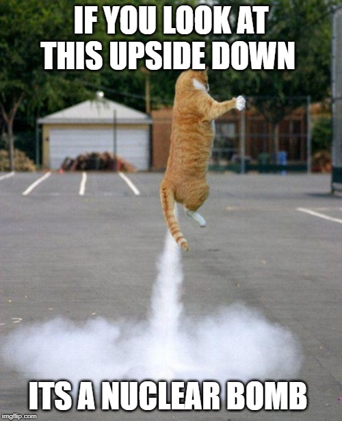 Rocket cat |  IF YOU LOOK AT THIS UPSIDE DOWN; ITS A NUCLEAR BOMB | image tagged in rocket cat | made w/ Imgflip meme maker