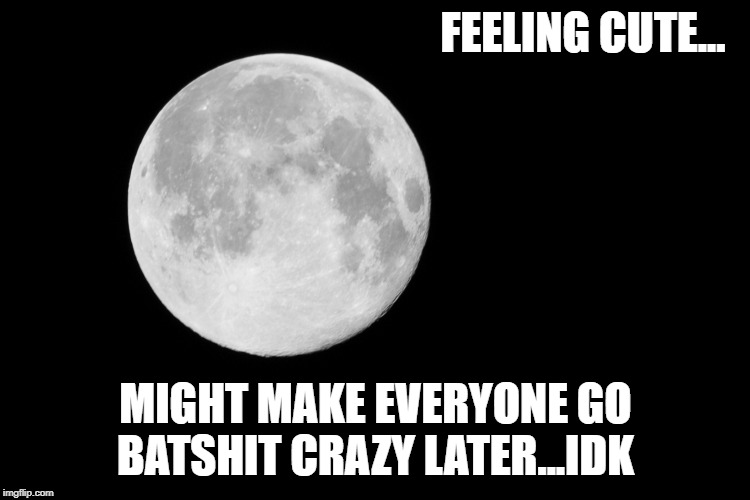 FEELING CUTE... MIGHT MAKE EVERYONE GO BATSHIT CRAZY LATER...IDK | image tagged in full moon,feeling cute,crazy | made w/ Imgflip meme maker