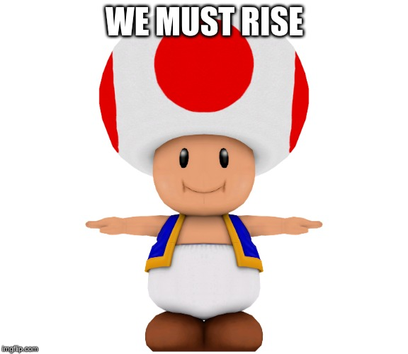 t pose toad 2.0 | WE MUST RISE | image tagged in bup,toad,fun,gay,t pose,e | made w/ Imgflip meme maker