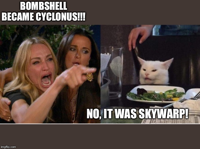 salad cat |  BOMBSHELL BECAME CYCLONUS!!! NO, IT WAS SKYWARP! | image tagged in salad cat | made w/ Imgflip meme maker