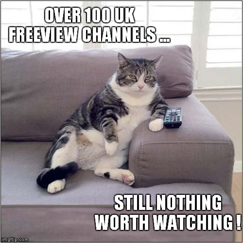 It's All Repeats ! |  OVER 100 UK FREEVIEW CHANNELS ... STILL NOTHING WORTH WATCHING ! | image tagged in fun,tv,repeat,cats | made w/ Imgflip meme maker