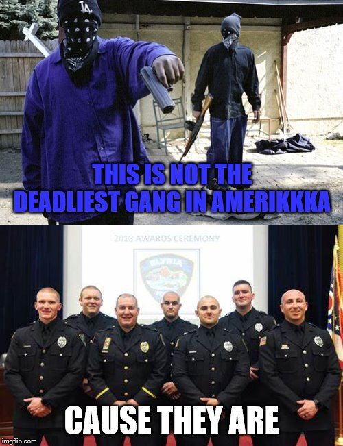 THIS IS NOT THE DEADLIEST GANG IN AMERIKKKA; CAUSE THEY ARE | image tagged in crip | made w/ Imgflip meme maker