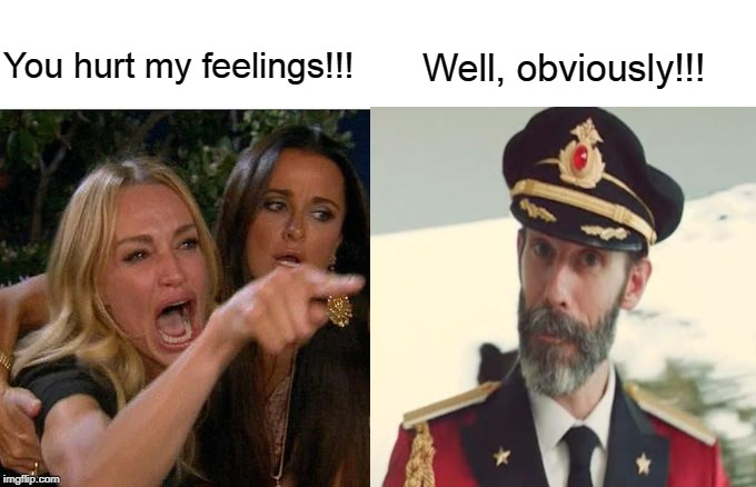 Woman Yelling at Captain Obvious |  You hurt my feelings!!! Well, obviously!!! | image tagged in woman yelling at cat,captain obvious | made w/ Imgflip meme maker