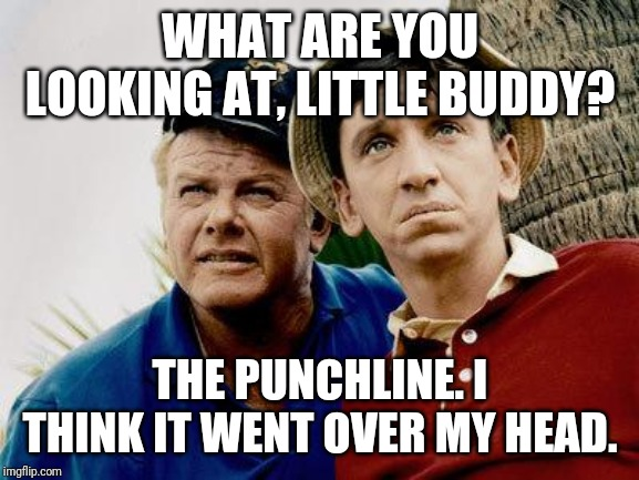 Gilligans Island | WHAT ARE YOU LOOKING AT, LITTLE BUDDY? THE PUNCHLINE. I THINK IT WENT OVER MY HEAD. | image tagged in gilligans island | made w/ Imgflip meme maker