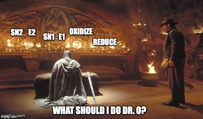 Choose Wisely | SN2    E2 WHAT SHOULD I DO DR. O? SN1   E1 OXIDIZE REDUCE | image tagged in choose wisely | made w/ Imgflip meme maker