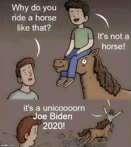 Why do you ride a horse like that? |  Joe Biden  2020! | image tagged in why do you ride a horse like that,joe biden 2020,joe biden,democrats,unicorn,memes | made w/ Imgflip meme maker