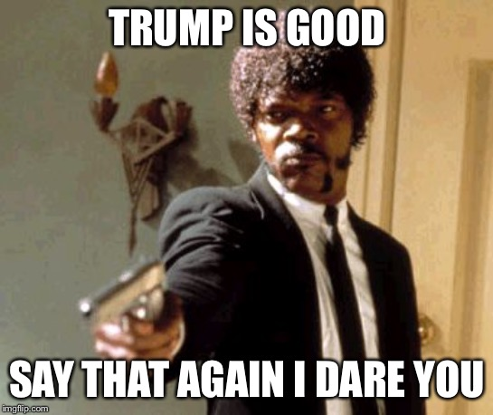 Say That Again I Dare You |  TRUMP IS GOOD; SAY THAT AGAIN I DARE YOU | image tagged in memes,say that again i dare you | made w/ Imgflip meme maker