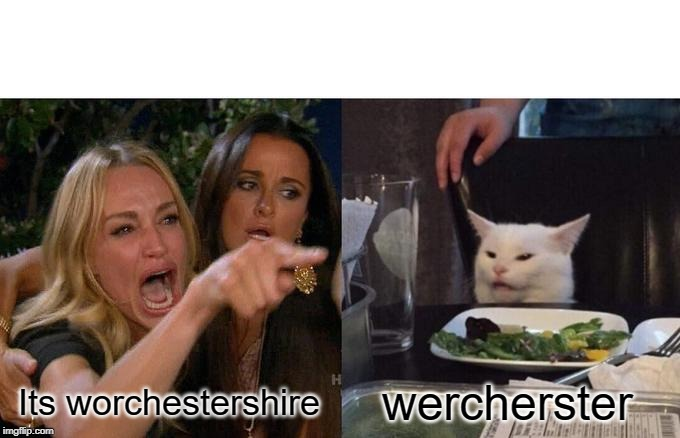 Woman Yelling At Cat |  wercherster; Its worchestershire | image tagged in memes,woman yelling at cat | made w/ Imgflip meme maker