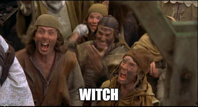 Monty Python witch | WITCH | image tagged in monty python witch | made w/ Imgflip meme maker