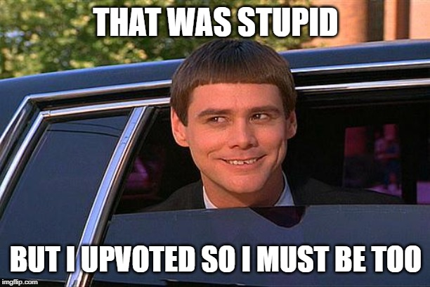 cool and stupid | THAT WAS STUPID BUT I UPVOTED SO I MUST BE TOO | image tagged in cool and stupid | made w/ Imgflip meme maker