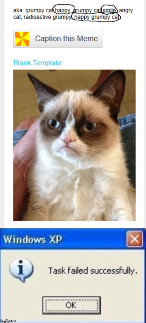 Image tagged in task failed successfully,grumpy cat,happy ...