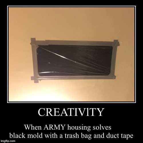 ARMY housing | CREATIVlTY | When ARMY housing solves     black mold with a trash bag and duct tape | image tagged in funny,demotivationals,army,gross,smiling cat,problems | made w/ Imgflip demotivational maker
