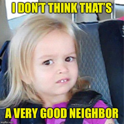 Confused Little Girl | I DON'T THINK THAT'S A VERY GOOD NEIGHBOR | image tagged in confused little girl | made w/ Imgflip meme maker