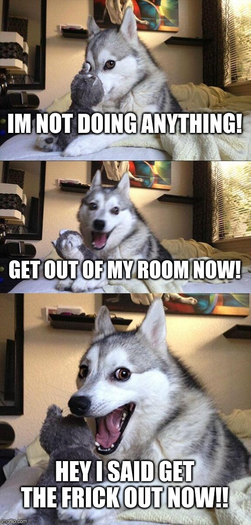 Bad Pun Dog Meme | IM NOT DOING ANYTHING! GET OUT OF MY ROOM NOW! HEY I SAID GET THE FRICK OUT NOW!! | image tagged in memes,bad pun dog | made w/ Imgflip meme maker