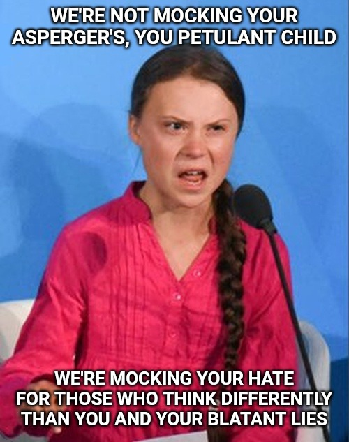 And if you think for one minute she doesn't deserve the criticism, you're a fool. |  WE'RE NOT MOCKING YOUR ASPERGER'S, YOU PETULANT CHILD; WE'RE MOCKING YOUR HATE FOR THOSE WHO THINK DIFFERENTLY THAN YOU AND YOUR BLATANT LIES | image tagged in greta thunberg how dare you,global warming,climate change,aspergers | made w/ Imgflip meme maker