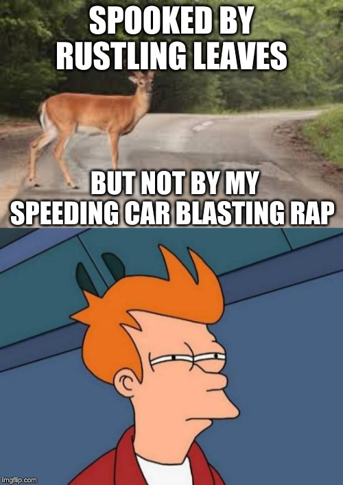 SPOOKED BY RUSTLING LEAVES BUT NOT BY MY SPEEDING CAR BLASTING RAP | image tagged in memes,futurama fry | made w/ Imgflip meme maker