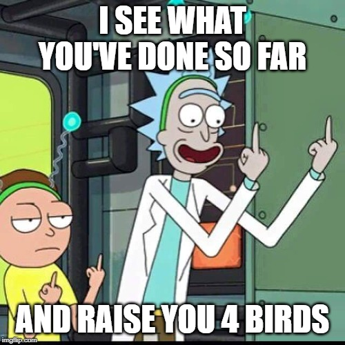 Rick and Morty |  I SEE WHAT YOU'VE DONE SO FAR; AND RAISE YOU 4 BIRDS | image tagged in rick and morty,work,incompetence,improvement,birds | made w/ Imgflip meme maker