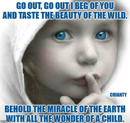 Go out |  GO OUT, GO OUT I BEG OF YOU AND TASTE THE BEAUTY OF THE WILD. BEHOLD THE MIRACLE OF THE EARTH WITH ALL THE WONDER OF A CHILD. CHIANTY | image tagged in earth | made w/ Imgflip meme maker