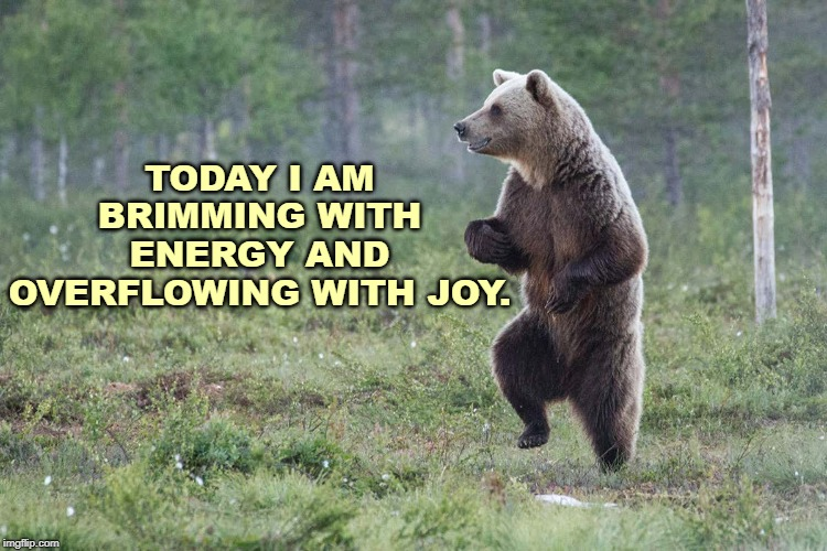 Joyful Affirmation |  TODAY I AM BRIMMING WITH ENERGY AND OVERFLOWING WITH JOY. | image tagged in affirmation,joy,energy,happiness,bear | made w/ Imgflip meme maker